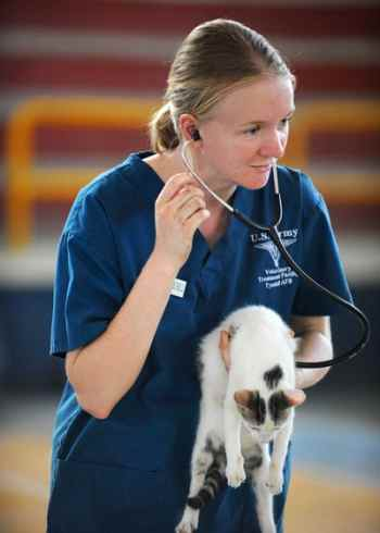 Veterinary_clinics